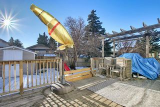 Photo 29: 211 Doverglen Crescent SE in Calgary: Dover Detached for sale : MLS®# A1060305