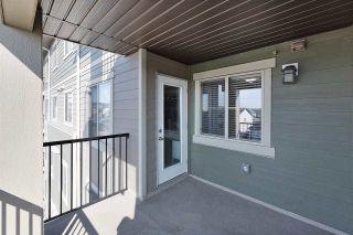 Photo 19: 321 270 MCCONACHIE Drive in Edmonton: Zone 03 Condo for sale : MLS®# E4251029