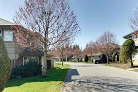 Photo 2: 11738 236 Street in Maple Ridge: Duplex for sale