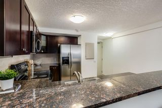 Photo 8: 106 728 3 Avenue NW in Calgary: Sunnyside Apartment for sale : MLS®# A1061819