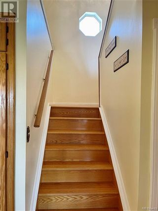 Photo 30: 1040 Route 172 in Back Bay: House for sale : MLS®# NB062930