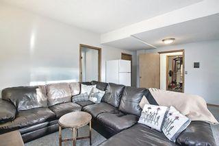 Photo 33: 39 Riverview Close: Cochrane Detached for sale : MLS®# A1079358