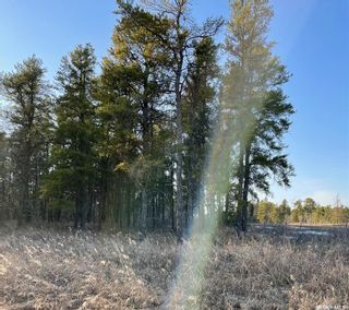 Photo 5: Over 1 acre lots in Hudson Bay: Lot/Land for sale : MLS®# SK850473