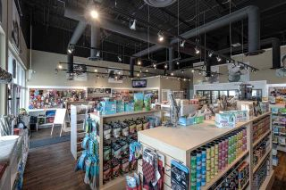 Photo 6: 4424 17 Street in Edmonton: Zone 30 Business for sale : MLS®# E4204352