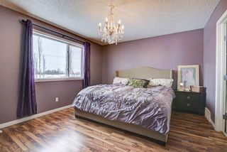 Photo 27: 219 WESTWOOD Point: Fort Saskatchewan House for sale : MLS®# E4228598