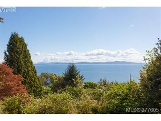 Photo 5: 923 Claremont Ave in VICTORIA: SE Cordova Bay House for sale (Saanich East)  : MLS®# 758129