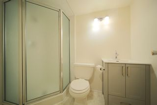 Photo 24: 6219 Louise Road SW in Calgary: Lakeview Detached for sale : MLS®# A1064256