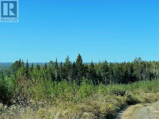Photo 17: - Saint David Ridge in St. Stephen: Vacant Land for sale : MLS®# NB063465