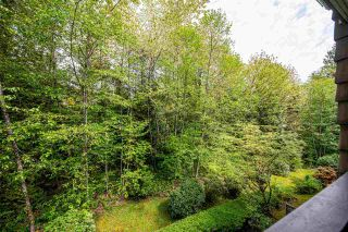 "Photo 26: 404 22233 RIVER Road in Maple Ridge: West Central Condo for sale in ""River Gardens"" : MLS®# R2574437"