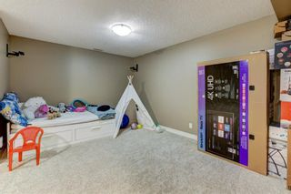 Photo 24: 53 EVANSDALE Landing NW in Calgary: Evanston Detached for sale : MLS®# A1104806