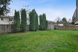 Photo 22: 9302 212B Street in Langley: Walnut Grove House for sale : MLS®# R2519712