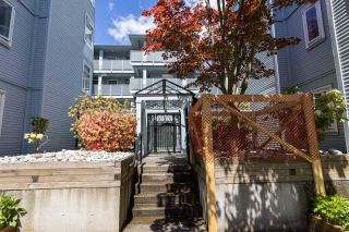 Photo 5: 305 7520 COLUMBIA Street in Vancouver: Marpole Condo for sale (Vancouver West)  : MLS®# R2582305