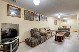 Photo 32: 147 Templevale Place NE in Calgary: Temple Detached for sale : MLS®# A1144568