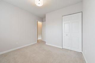 Photo 14: 11411 37A Avenue in Edmonton: Zone 16 House for sale : MLS®# E4255502