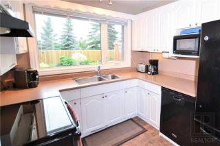 Photo 8: 11 Twain Drive in Winnipeg: Westwood Residential for sale (5G)  : MLS®# 1820610