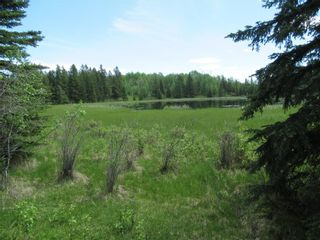Photo 44: 351035A Range Road 61: Rural Clearwater County Detached for sale : MLS®# C4297657