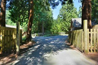 "Photo 2: 2508 LOWER Road: Roberts Creek House for sale in ""Roberts Creek"" (Sunshine Coast)  : MLS®# R2598378"