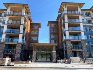 Photo 3: 209 20673 78 AVENUE in Langley: Willoughby Heights Condo for sale : MLS®# R2492554