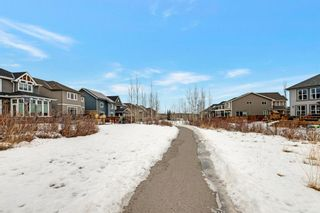 Photo 38: 11 Cranarch Rise SE in Calgary: Cranston Detached for sale : MLS®# A1061453