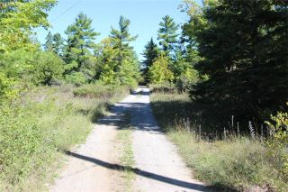 Photo 12: 275 Somerville Conc 7 Road in Kawartha Lakes: Rural Somerville House (Other) for sale : MLS®# X3605467