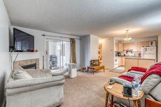 Photo 9: 417 1717 60 Street SE in Calgary: Red Carpet Apartment for sale : MLS®# A1133499
