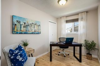 Photo 9: 6044 4 Street NE in Calgary: Thorncliffe Detached for sale : MLS®# A1115924