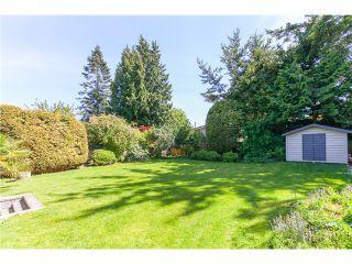 Photo 20: 5458 5B AV in Tsawwassen: Pebble Hill House for sale : MLS®# V1121880