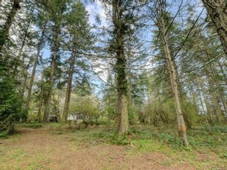 Photo 5: 867 Sayward Rd in : SE Cordova Bay House for sale (Saanich East)  : MLS®# 871953