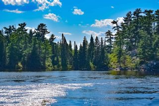 Photo 9: Lot 8 Five Point Island in South of Kenora: Vacant Land for sale : MLS®# TB212085