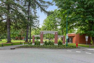 "Photo 16: 401 2378 WILSON Avenue in Port Coquitlam: Central Pt Coquitlam Condo for sale in ""WILSON MANOR"" : MLS®# R2495375"