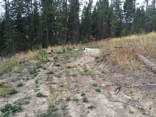 Photo 12: 6575 Dixon Dam Road in Vernon: South BX Vacant Land for sale (North Okanagan)  : MLS®# 10106215