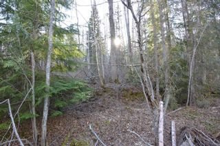 Photo 4: LOT A KLOECKNER Road in Smithers: Smithers - Rural Land for sale (Smithers And Area (Zone 54))  : MLS®# R2598861
