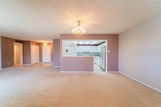 Photo 11: 409 14810 51 Avenue in Edmonton: Zone 14 Condo for sale : MLS®# E4263309