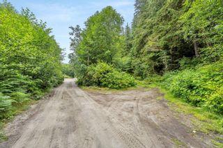 Photo 15: 16706 Parkinson Rd in Port Renfrew: Sk Port Renfrew Land for sale (Sooke)  : MLS®# 882036