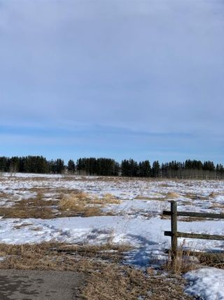 Photo 11: 298086 27 Street W: Rural Foothills County Residential Land for sale : MLS®# A1067248