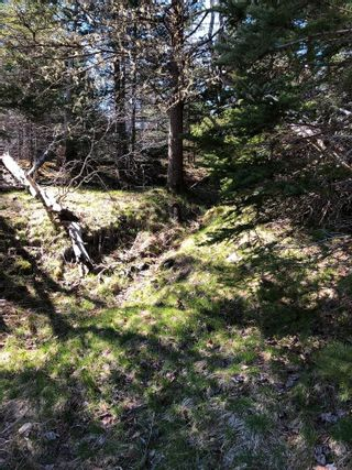 Photo 3: 33 Bruce Drive in Ship Harbour: 35-Halifax County East Vacant Land for sale (Halifax-Dartmouth)  : MLS®# 202110751