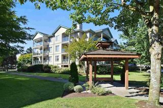 """Photo 3: 304 20433 53 Avenue in Langley: Langley City Condo for sale in """"Countryside Estates"""" : MLS®# R2254619"""