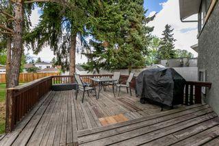 Photo 33: 8416 19 Avenue in Edmonton: Zone 29 House for sale : MLS®# E4248440