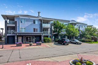Main Photo: 2106 2280 68 Street NE in Calgary: Monterey Park Apartment for sale : MLS®# A1130519