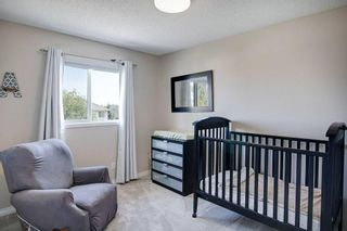 Photo 22: 21 CITADEL CREST Place NW in Calgary: Citadel Detached for sale : MLS®# C4197378