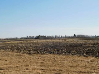 Photo 8: Hwy 28 North of Twp 570: Rural Sturgeon County Rural Land/Vacant Lot for sale : MLS®# E4238709