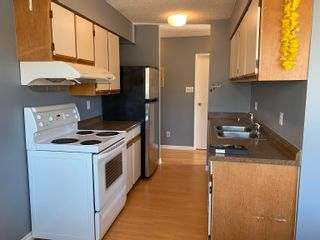 """Photo 5: G3 1026 QUEENS Avenue in New Westminster: Uptown NW Condo for sale in """"Amara Terrace"""" : MLS®# R2619763"""