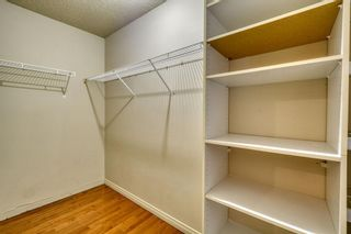 Photo 41: 143 Chapman Way SE in Calgary: Chaparral Detached for sale : MLS®# A1116023