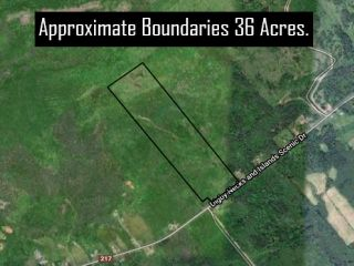 Photo 5: Lot Highway 217 in Rossway: 401-Digby County Vacant Land for sale (Annapolis Valley)  : MLS®# 202111914