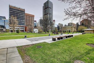 Photo 33: 210 340 14 Avenue SW in Calgary: Beltline Apartment for sale : MLS®# A1104058