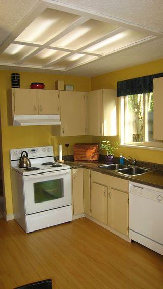 Photo 7:  in Delta: Scottsdale Home for sale ()