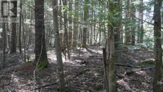 Photo 7: Lot 9 Madashak Road in Middle New Cornwall: Vacant Land for sale : MLS®# 202113818