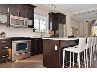 Photo 2: 53 10151 240 Street in Maple Ridge: Albion Home for sale ()  : MLS®# V1089172