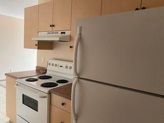Photo 5: 407B 260 SPRUCE RIDGE Road: Spruce Grove Condo for sale : MLS®# E4253516