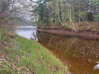 Photo 4: N/A Wallace River West Road in Wallace River West: 102N-North Of Hwy 104 Vacant Land for sale (Northern Region)  : MLS®# 202108934